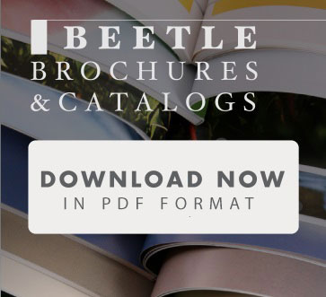 download-the-brochures